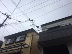 アンテナ倒れる