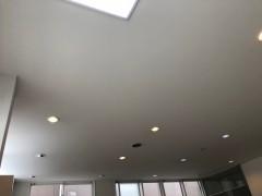 ダウンライトのみの天井